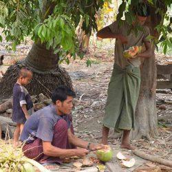 Nel villaggio
