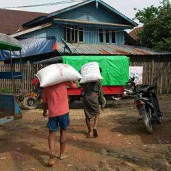 Trasporto del riso nel post-emergenza