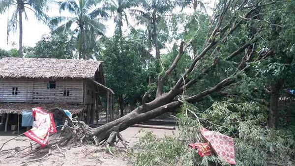 Emergenza post ciclone 2